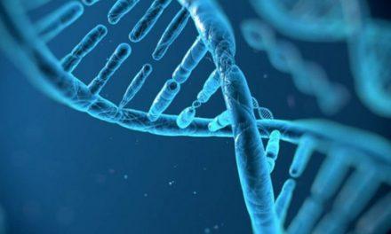 Si può modificare il DNA con l'esercizio fisico?